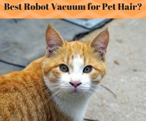 Best Robotic Vacuums for Pet Hair 2019 - Reviews & Buyer's Guide