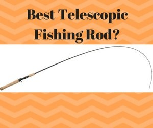 Best Telescopic Fishing Rods 2019 - Reviews & Buyer's Guide 11